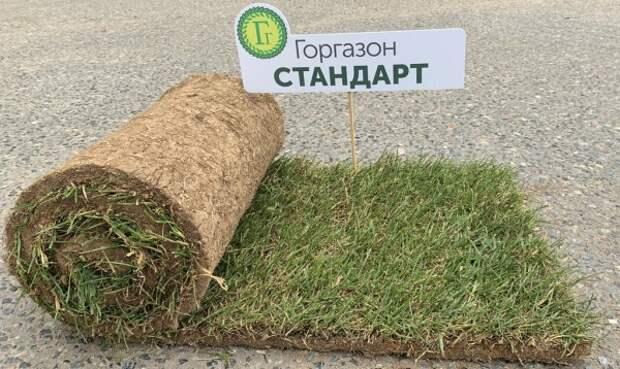Рулонные газоны - самый простой способ сделать газон идеальным
