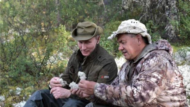 Новые таежные снимки Путина и Шойгу взбудоражили Сеть