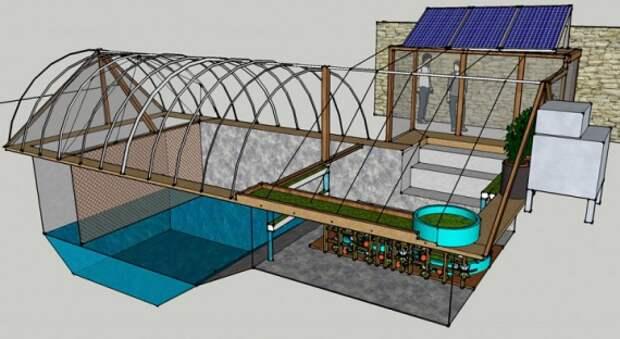 Органическое земледелие, пермакультура: теплица из бассейна