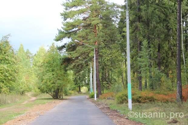 Парк имени Кирова в Ижевске начали обрабатывать от клещей