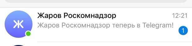 Глава Роскомнадзора зарегистрировался в Telegram, который он заблокировал