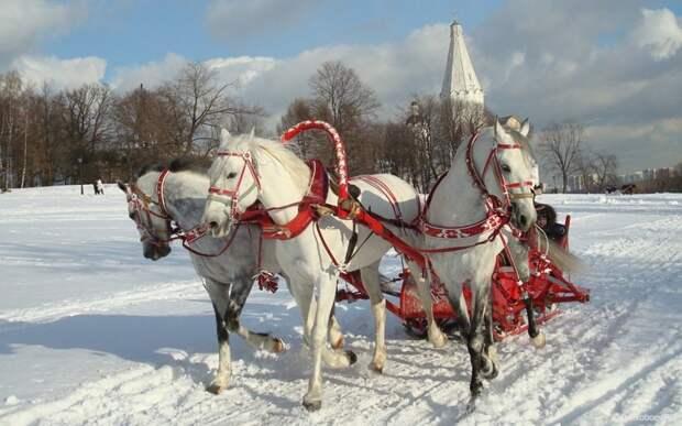 На русской тройке весело, деревня, интересно, новый год, село, юмор