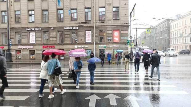 Сильные порывы ветра и дождь ожидают жителей Петербурга в эти выходные