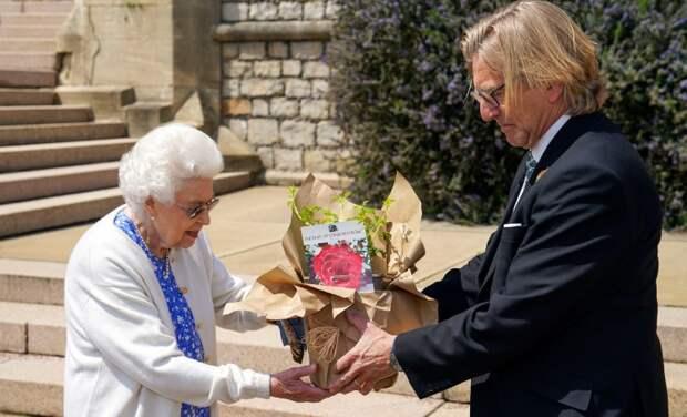 Елизавета II высадила в саду Виндзора розы, названные в честь принца Филиппа