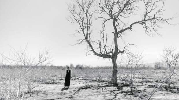 Ставрополье оказалось навтором месте вРоссии поухудшению климата
