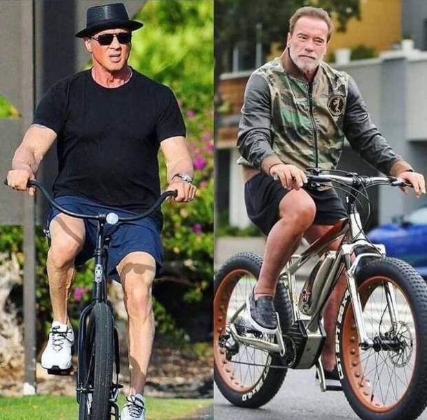 Смешные картинки 23 июля 2020