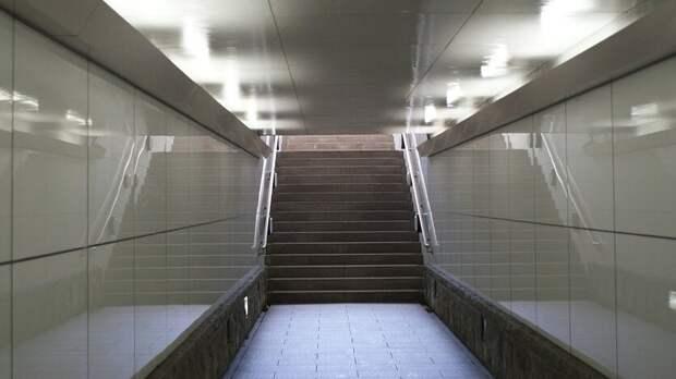 Сроки строительства подземного перехода возле «Ростов-Арены» назвали власти