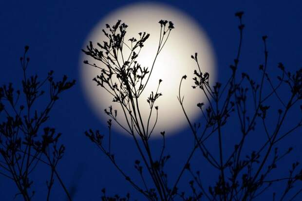 Лунный календарь с 3 по 9 апреля