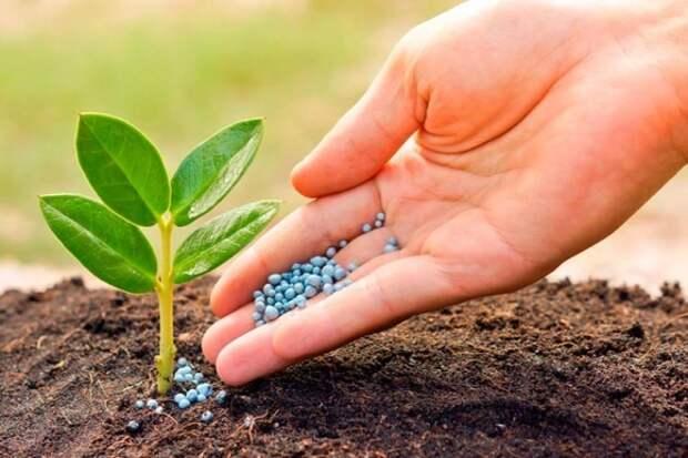 Белоруссия нашла рынок сбыта для калийных удобрений