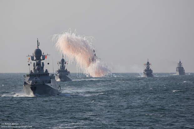 Корветы типа «Каракурт» — реальная сила на море