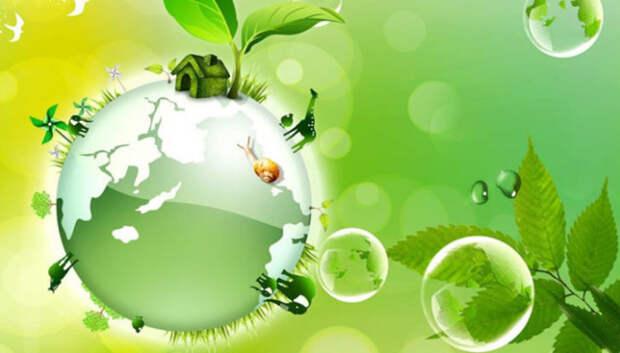 Более 100 заявок поступило на ярмарку экологических проектов в Подмосковье