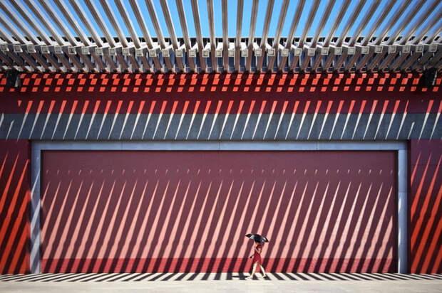2016 iPhone Photography Award Winners 6 Лучшие фото года, снятые на айфон