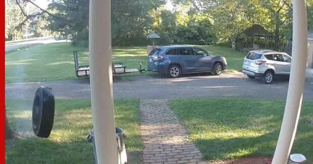 Неожиданный «гость» позвонил в дверь жителям США: видео