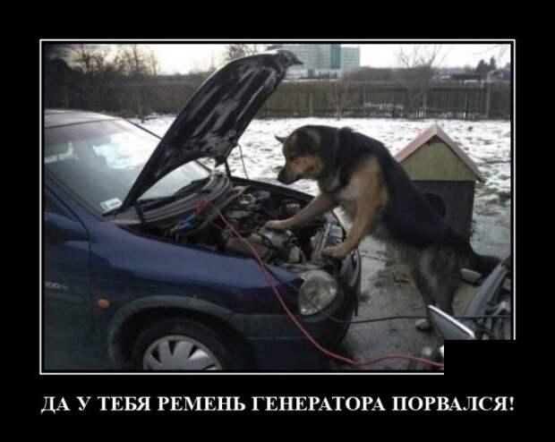 Демотиватор про ремонт авто