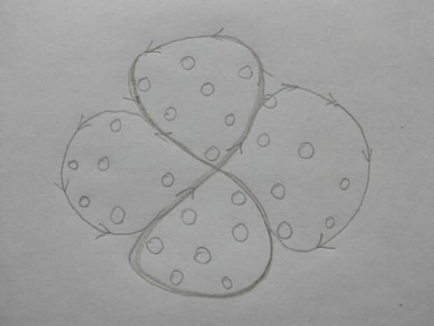 Схема подвязывания высокорослых кустов. Фото автора