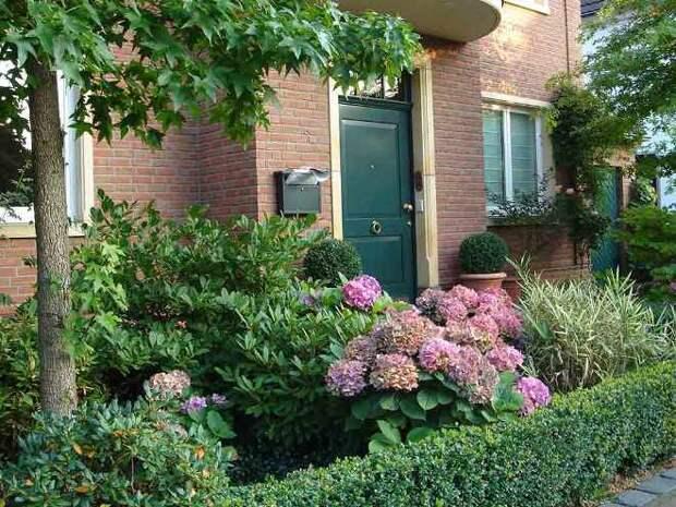 Палисадник перед домом: размер, стиль, выбор растений (80 фото)