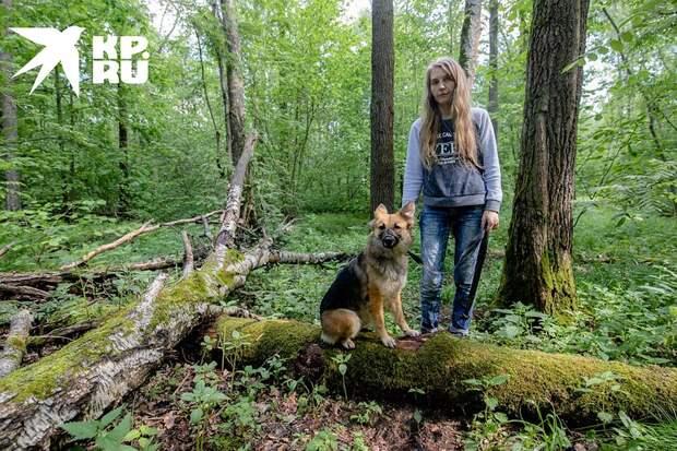 Ориентироваться в лесу помогает собака Рэри Фото: Андрей АБРАМОВ