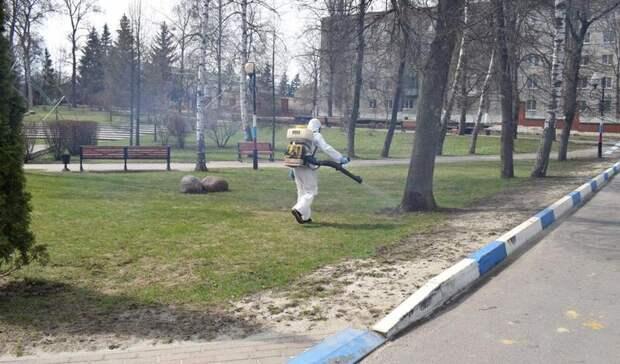 Общественные парки Белгородской области обработают отклещей