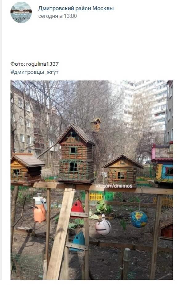 Фото дня: город птиц на Клязьминской