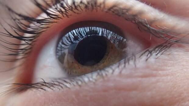 Доктор Мясников назвал определяемые по глазам человека опасные болезни