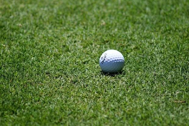 В школе №1570 запущен проект по развитию игры в гольф