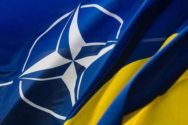 Член НАТО поставил Украину на место нерадивого ученика | Русская весна