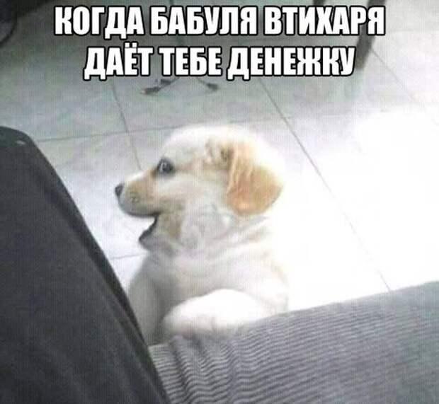 1470240855_13