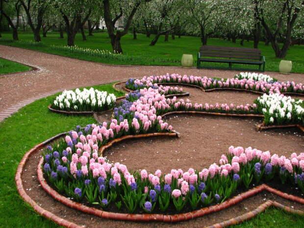 Правильно упорядоченная клумба, в которой растения цветут продолжительно и одновременно.
