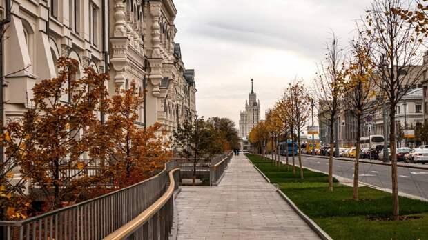 Синоптики центра «Фобос» пообещали москвичам на следующей неделе потепление до +13 градусов