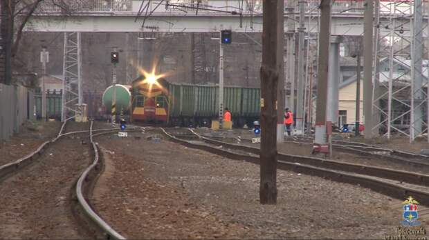Молодая девушка погибла под колесами поезда в Новочеркасске