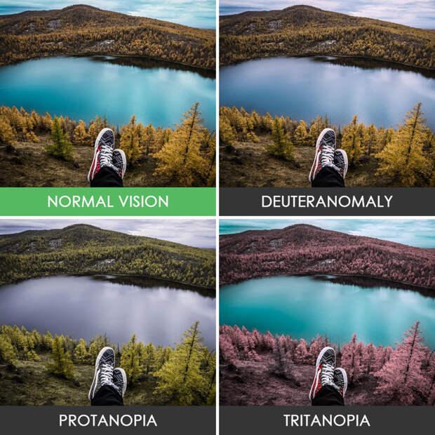 11. Вид на озеро  дальтонизм, люди, мир