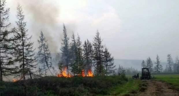 Шугалей рассказал, как спасти российские леса от пожаров