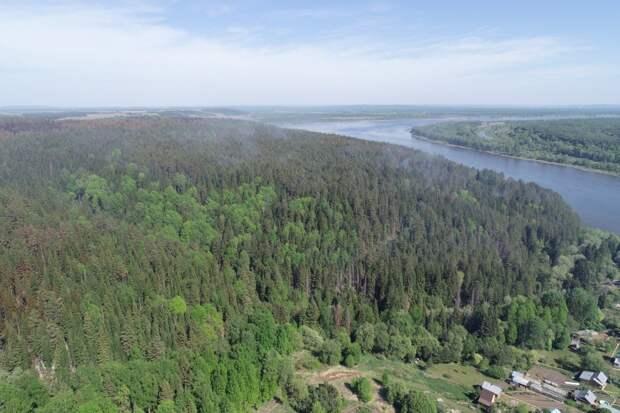 Воздух в зоне лесного пожара в Удмуртии признали безопасным