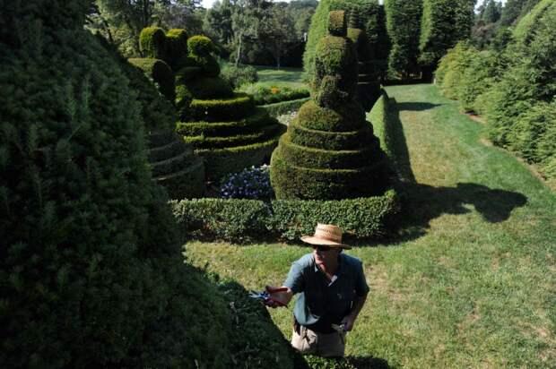 Ladew Topiary Gardens-2013-08-14 (6)