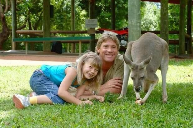 Сейчас Бинди живет и работает в австралийском зоопарке, основанном семьей Ирвин еще в 1970 году Бинди Ирвин, дикие животные, животные, зоопарк, истории, натуралист, охотник на крокодилов, стив ирвин