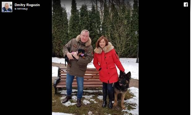 Пусть жизнь в новом году вас не кусает: Рогозин с таксой поздравил россиян