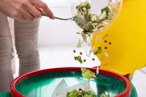 Примерно треть всех произведенных продуктов питания отправляется на свалку