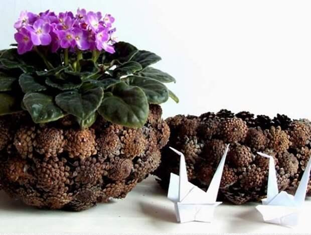Вазы и цветочные горшки из обычных шишек хвойных деревьев