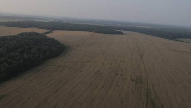 Более 200 земельных участков выставлены на торги в Подмосковье