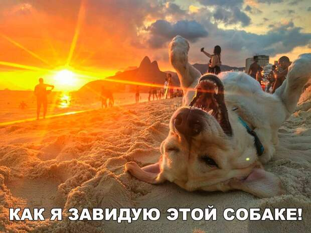 Утренний позитив в картинках с надписями (12 фото)