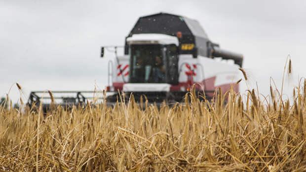 Обратный эффект: политика Латвии обеспечила триумф России в сельском хозяйстве