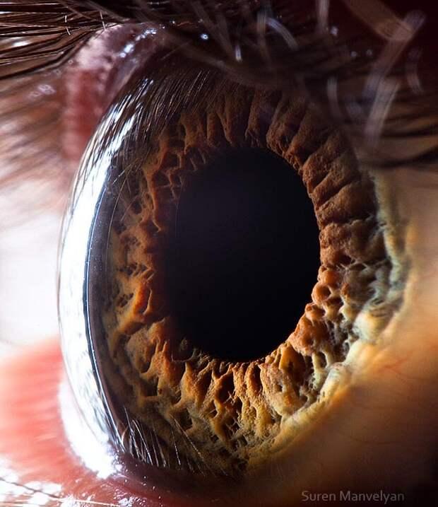 eye-macro-photo-15