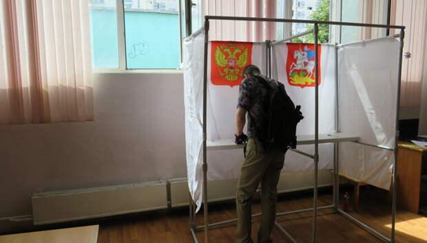 Стали известны округа‑лидеры Подмосковья по явке на голосование по Конституции на 15:00