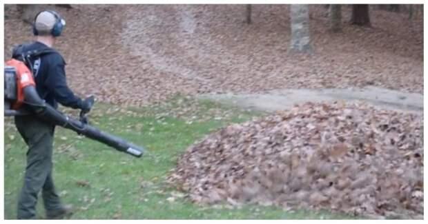Неожиданный сюрприз для папы в куче опавших листьев в мире, видео, дети, папа, прикол, реакция, розыгрыш, уборка, юмор