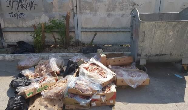 В Тюмени около контейнерной площадки на Комсомольской решили утилизировать би...