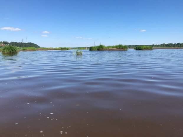 Решившая искупаться на реке Кама женщина утонула в Сарапуле
