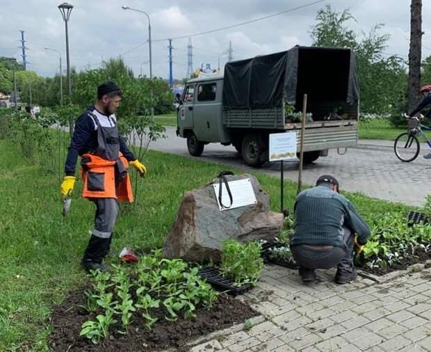 Возле памятного камня в усадьбе Алтуфьево коммунальщики провели уборку и высадили цветы