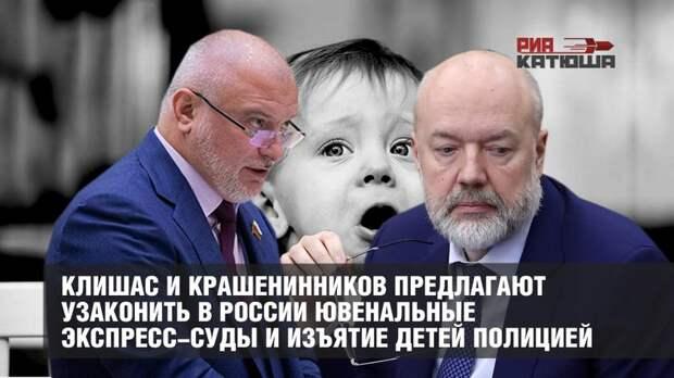 Клишас и Крашенинников предлагают узаконить в России ювенальные экспресс-суды и изъятие детей полицией