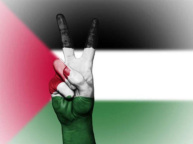 В Палестине заявили о намерении продолжать удары по Израилю, пока тот не прекратит атаки
