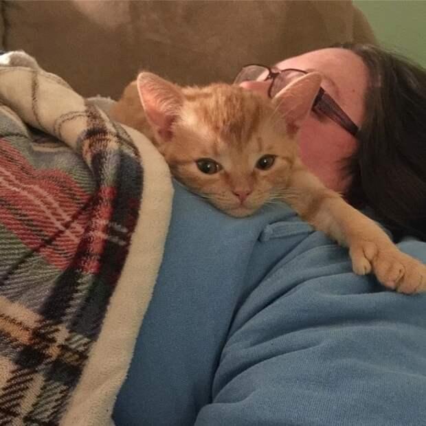 Котенок лежит на женщине